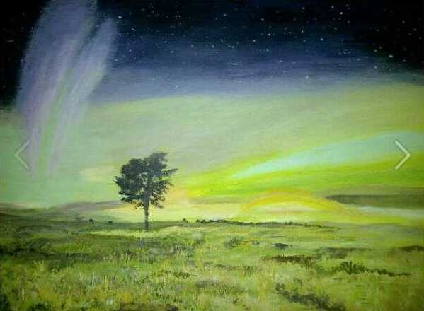 the-northern-lights-over-angus